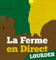 les incontournables de la gastronomie dans les Pyrénées foie gras et charcuteries