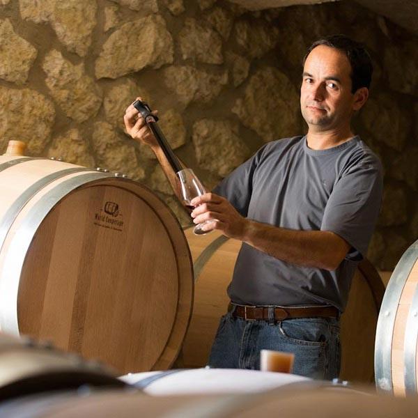 vin du sud-ouest vins des pyrénées